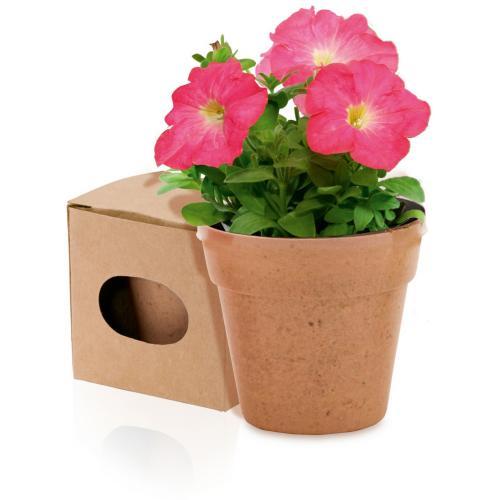 Doniczka do kwiatów neutralny