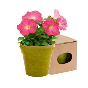 Doniczka do kwiatów zielony